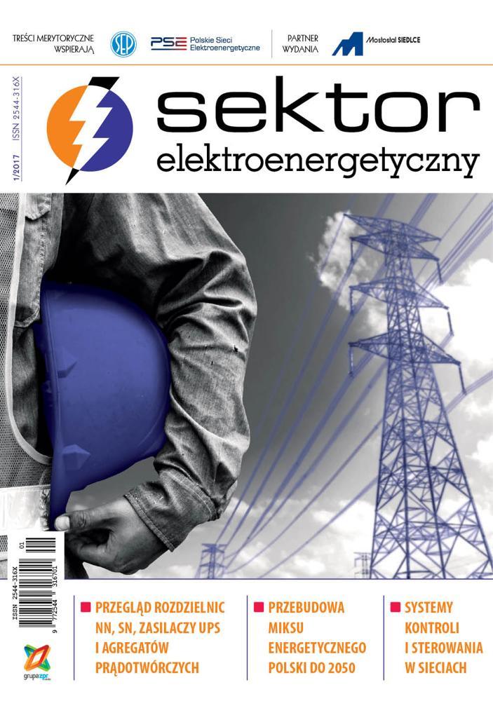Sektor Elektroenergetyczny 2017