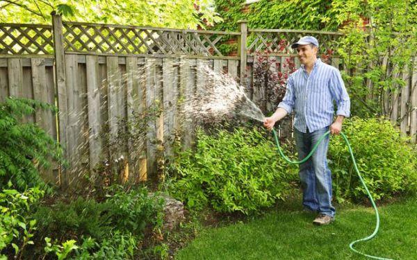 Jak i czym podlewać ogród. Poradnik dobrego podlewania